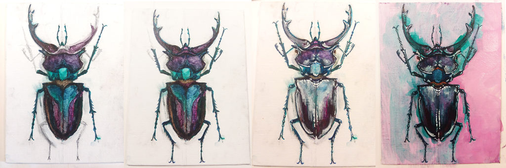 Painting Process Pink Stag Beetle