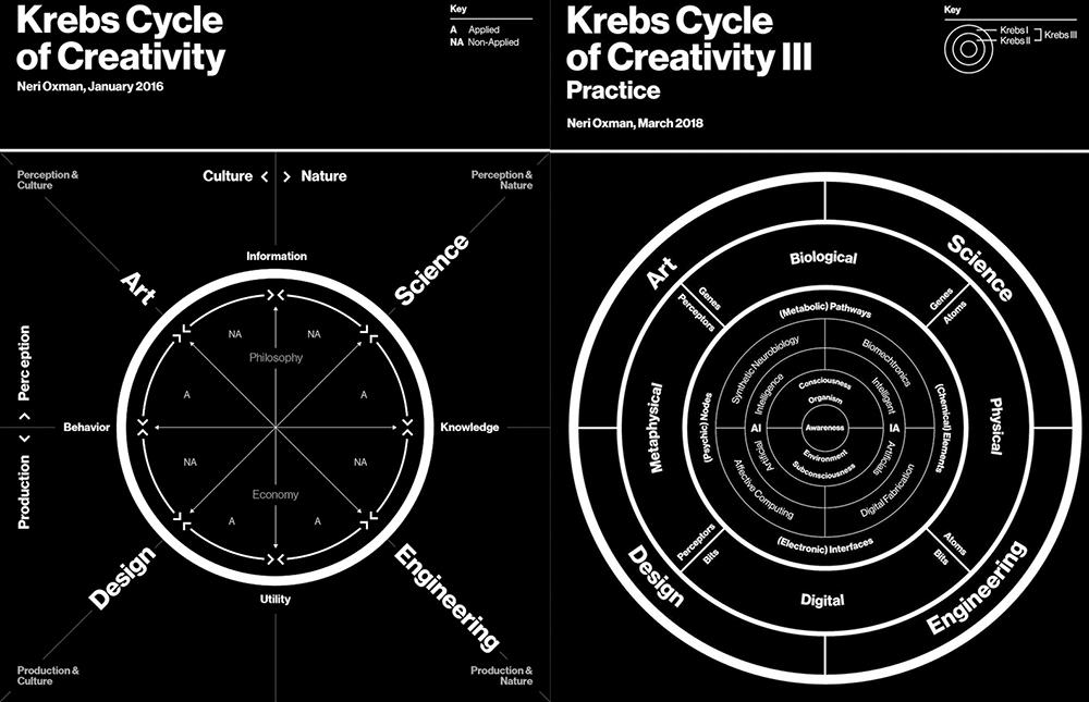 Neri Oxman Krebs Cycle of Creativity Science Art Design Engineering