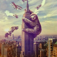 The Sloth: A Model for Urban Design