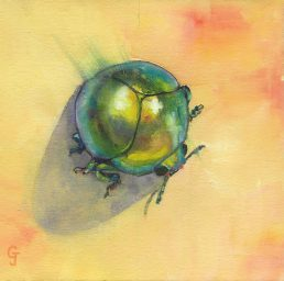 commercial and boutique hotel art original paintings insects art design