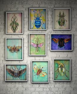 Insect Botanical Art Collection Paintings of Bugs