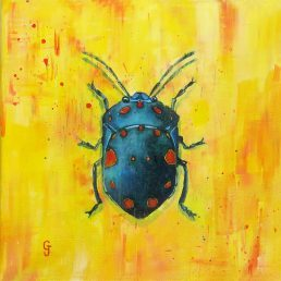Cyclopeplus lacordairei purple and black insect bug painting buy art wrapped canvas